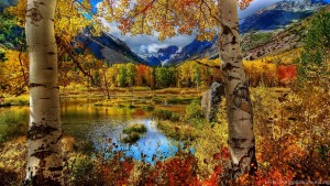 1054743_perfect-autumn-scenery-wallpapers-full-hd-2560x1600-free_2560x1600_h